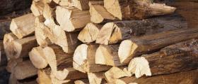 Дърва за огрев в област Бургас