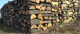 Дърва за огрев в Омуртаг-Търговище