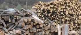 Дърва за огрев в Стойките-Смолян