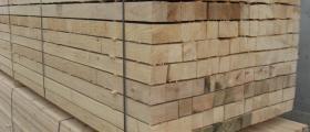Дървен материал в Сърница - Велинград - Триманс 1 ЕООД