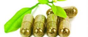 Хомеопатични лекарства във Върбица - Шумен