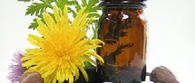 Хомеопатични продукти в Троян - Ловеч