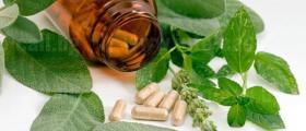 Хранителни добавки в Бяла - Русе