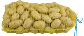 Картофи за семе в Алино-Самоков