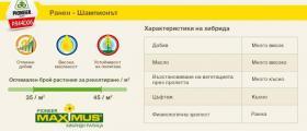 MAXIMUS® семена за зимна рапица в София