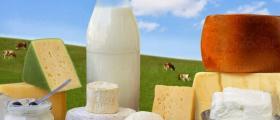 Млечни продукти Плевен