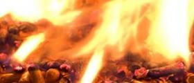 Пелети за отопление в Плевен