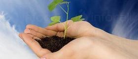 Препарати за растителна защита в Добрич