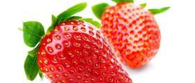 Пресни плодове на едро в Пловдив