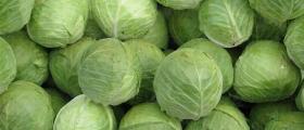 Пресни зеленчуци на едро в Пловдив - Донимекс ЕООД