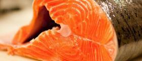 Рибни деликатеси във Варна - Север Експорт ООД