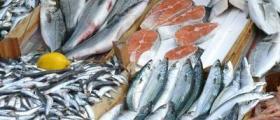 Рибни продукти в София-Орландовци