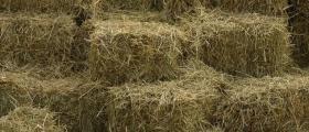 Сено, бали, слама и тревни смески в Липен-Монтана