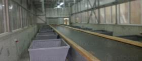Системи за сортиране на твърди битови отпадъци България