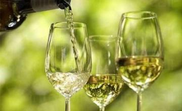 Бяло вино Сороко Совиньон Блан в Поморие