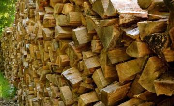 Дърва за огрев Плевен