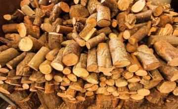 Дърва за огрев в Габрово