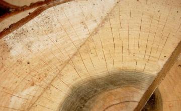 Дървен материал в Мадан и Смолян