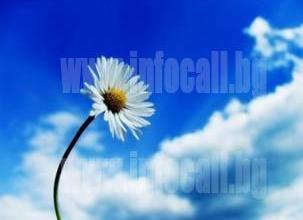 Хомеопатични лекарства в Русе