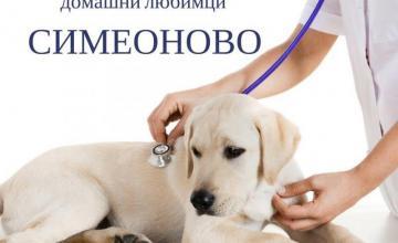 Хотел за кучета цени в София - Ветеринарна клиника Симеоново