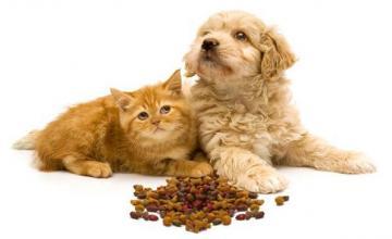 Храна за кучета Габрово