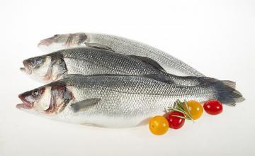 Охладена риба във Варна