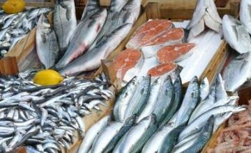 Рибни продукти в София-Орландовци - Риба и рибни продукти София