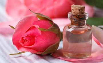 Розово масло в Стара Загора и Казанлък