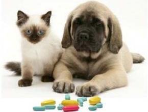 Ветеринарни лекарства и продукти в Шумен