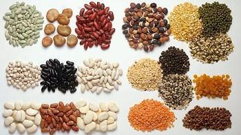 Зърнени и бобови растения в Чернолик-Силистра