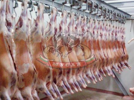 Агнешко месо халал (хелал) във Вълкович-Джебел - Мусан-Д ООД