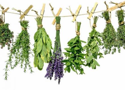 Билки и билкови продукти в Бяла Слатина - Аптека Огафарм