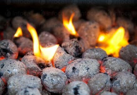 Брикети за барбекю от дървени въглища в София, Перник, Кюстендил, Благоевград и Дупница - Албрек
