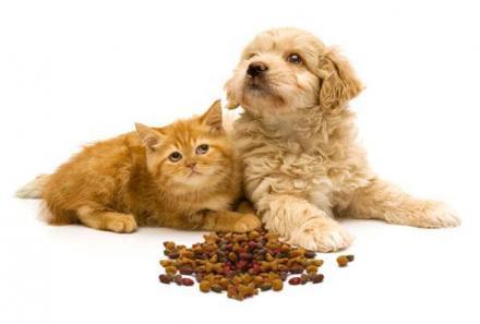 Храна за кучета Габрово - Андриана