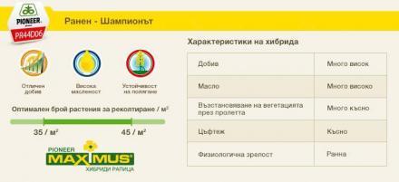 MAXIMUS® семена за зимна рапица в София - Пионер Семена България