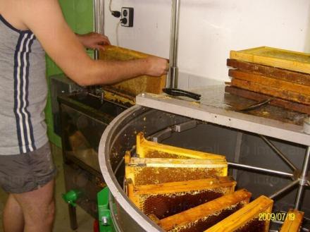 Пчеларски инвентар Плевен - Цвят