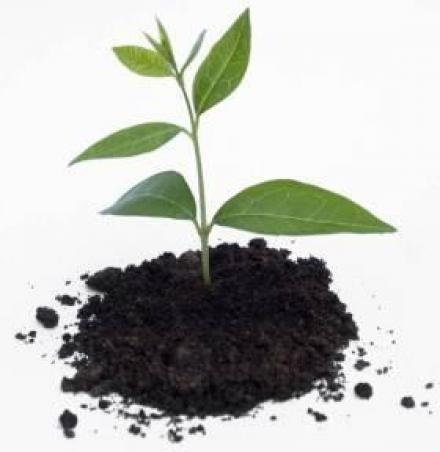 Препарати за растителна защита в Карнобат - Агромагазин Желанкова