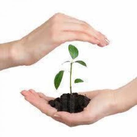 Продажба препарати за растителна защита в Ботевград - Сортови семена 99 ООД