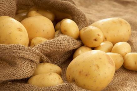 Ранни картофи в Алино-Самоков - Райко Чифлиджанов  ЕТ