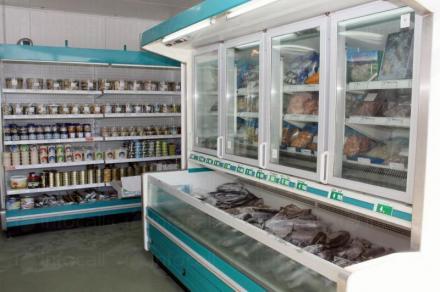 Замразена риба във Варна - Север Експорт ООД