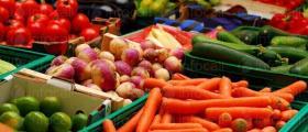 Анализ на плодове и зеленчуци в Бургас