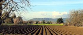 Арендуване на земя в Ихтиман