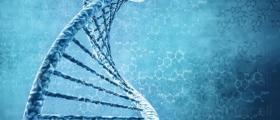 ДНК анализ в София-Център