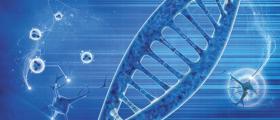 ДНК Анализи в София - Лозенец