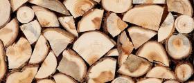 Добив на дървен материал в Белица-Благоевград