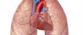 Функционално изследване на дишането във Варна - Доц. Д-р Маринка Пенева