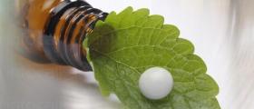 Хомеопатично лечение в Харманли