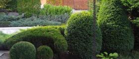 Интериорно озеленяване в София-Студентски град
