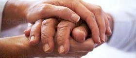 Избор подходяща трудотерапия за възрастни хора с умствена изостаналост в община Лъки
