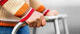 Избор подходяща трудотерапия за възрастни хора с умствена изостаналост в община Средец